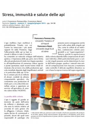 Stress, immunità e salute delle api
