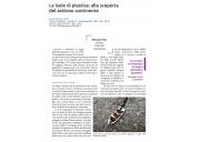 Le isole di plastica: alla scoperta del settimo continente