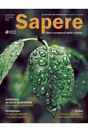 Sapere 6/2020