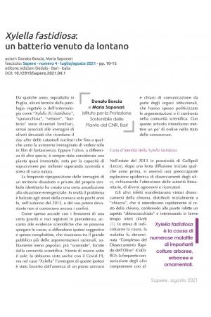 Xylella fastidiosa: un batterio venuto da lontano