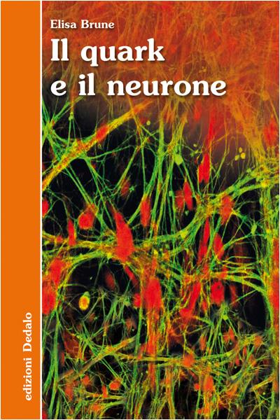 Il quark e il neurone