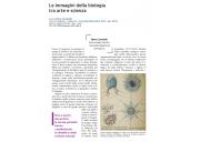 Le immagini della biologia tra arte e scienza