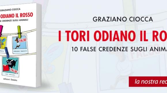 """Recensione del libro """"I TORI ODIANO IL ROSSO"""" di Graziano Ciocca"""